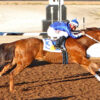 Defending Champion Jess A Satin Flash Draws Post 7 for First Moonflash Maturity