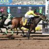 Sam Stevens Dispersal Sale Starts July 12 at Thoroughbred Auctions.com