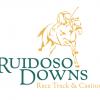 Ruidoso Horse Sale NM Bred Consignment form