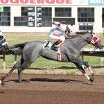 New Mexico Cup Quarter Horse Preview