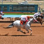 Leading Cartel is Morning-Line Choice for Inaugural Mountain Top QH Derby