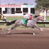 Ten State-Bred Quarter Horses Entered Back in $407,946 New Mexico State Fair Futurity
