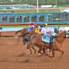 Flashin Fire is Fastest Qualifier to October 31, $350,000-est. New Mexico Cup Futurity