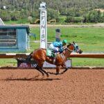 Slammed is Morning-Line Favorite for Petticoat Stakes