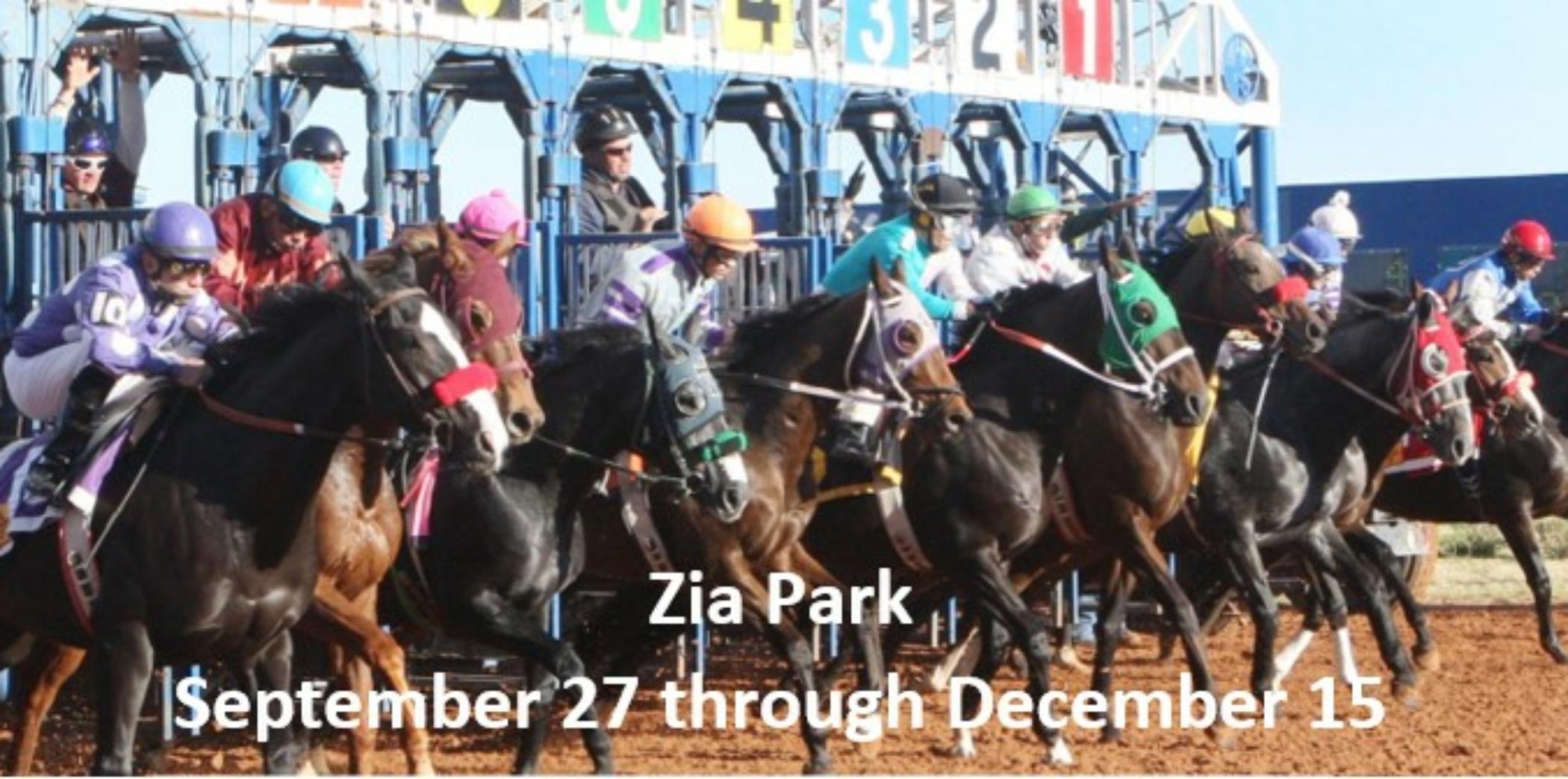 Zia Park Racing 4